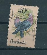 1982 Barbados Birds,oiseaux,vogels Used/gebruikt/oblitere - Barbados (1966-...)