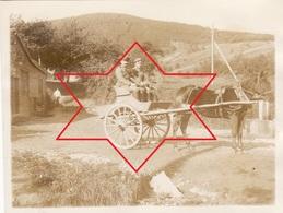 Photo 1916 ZIMMERBACH (près Munster) - Attelage Devant Le Lager Protzkasten, Camp Allemand (A205, Ww1, Wk 1) - France