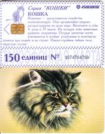 RUSSIA-KRASNODAR(chip) - Cat(150 Units-large), Used - Russia