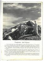 Tematica Militare  4° Reggimento Alpini Preghiera Dell'Alpino Viaggiata Condizioni Come Da Scansione - Regiments