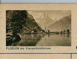 Carte Illustré Neuve N° 182 - 0133 D   - FLÜELEN Am Vierwaldstättersee  (Zumstein 2009) - Entiers Postaux