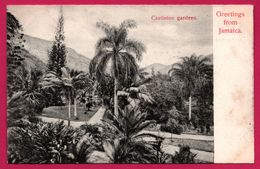 Greetings From Jamaica - Jamaique - Castleton Gardens - Jamaïque