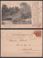 Australia - Victoria - Melbourne : The Botanical Gardens - Melbourne