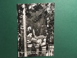 Cartolina Dolomiti Del Brenta - Madonna Di Campiglio - Grand Hotel Alpi  - 1958 - Trento