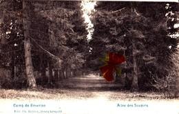 Camp De BEVERLOO - Allée Des Soupirs - Leopoldsburg (Kamp Van Beverloo)