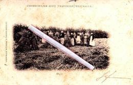 CISTERCIENZER ABDIJ (Trappisten) WESTMALLE - Oogst - - Malle