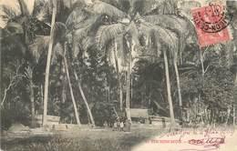 """CPA VIETNAM """"Les Cocotiers"""" - Vietnam"""