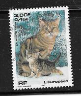 FRANCE 3284 Chat Européen Cat Catze . - France