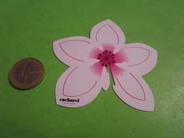 CACHAREL -  Carte Parfumée - Perfume Cards