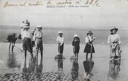 Berck. Une Famille à La Pêche Aux Crevettes à Berck Plage. - Berck