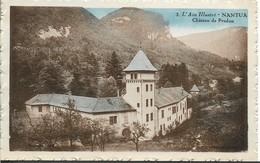 NANTUA Château De Pradon - Nantua