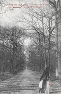 Draveil. Le Carrefour De La Croix De L'Ermitage Dans La Forêt De Sénart, La Voie Du Chêne D'Antin. - France