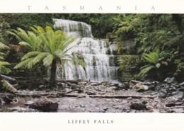 Liffey River Falls, Northern Tasmania - Unused - Other