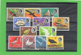 12 Valeurs ( Oiseaux ) Pitcaire ISLANDE. - Timbres