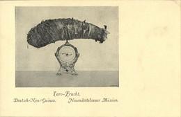 German New Guinea, Taro Fruit (1910s) Mission - Papua New Guinea