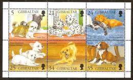 Gibraltar 1996 Yvertn°  758-763 *** MNH Cote 8 Euro Faune Chiens Dogs Honden - Gibraltar