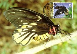 Papua New Guinea, Queen Alexandra's Birdwing Butterfly Postcard (1988) - Papua New Guinea