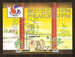 Gibraltar 1991 Yvertn° Bloc 19 (o) Oblitéré  Cote 6,50 Euro  Fauna Honden Chiens Dogs - Gibraltar