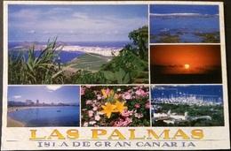 Ak Spanien - Las Palmas - La Palma