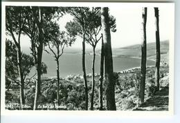 CP Photo Liban Jouni Bay Lebanon - Liban