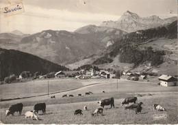 Notre Dame De BELCOMBE Lvert Paturages Le Mont Chavin (semimoderne) - Autres Communes