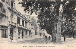 MONTPELLIER       BOULEVARD DE  L ESPLANADE - Montpellier