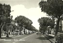 """2574 """"BENEVENTO-VIALE ATLANTICI-FIAT 1100,AUTOBUS-INSEGNA SHELL TRA GLI ALBERI"""" CARTOLINA ORIG.  SPED. - Benevento"""