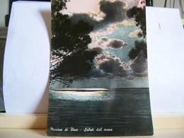 1954 - Marina Di Pisa - Saluti Dal Mare - Tramonto - Ed. Gonnelli E Palmieri - Pisa