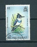 1984 Montserrat Birds,oiseaux,vogels Used/gebruikt/oblitere - Montserrat