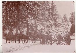 Camp Van Brasschaet - 27 Januari 1895 - Foto Formaat 11 X 15.5 Cm - Lieux
