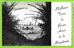 MAURITANIE / 3 MINIS CARTE MEILLEURS VOEUX DE BONNE ANNEE DE LA MAURITANIE (ATAR) - Mauretanien