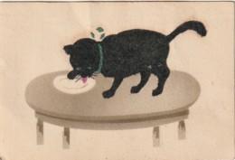 JA 27- CHAT VELOURS NOIR LAPANT DANS UNE ASSIETTE - 2 SCANS - Cats