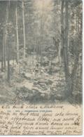 Spa - 120 - Promenade D'Orléans - 1903 - Spa