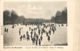 Bruxelles - Le Lac Du Bois De La Cambre - Scène De Patinage - Forests, Parks