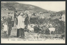 Corse - Scènes Et Types - Bénédiction Des Moutons   - Gak28 - Frankrijk