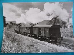 Train à Vapeur Des CFF  Pour DIVONNE Peu Après La Frontière En 1962 - Treinen