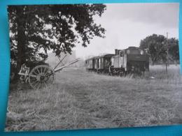 Train à Vapeur Des CFF  Pour NYON Près De La Frontière Suisse En 1962 - Treinen