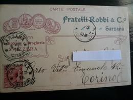 Sarzana La Spezia Testatina Pubblicitaria  Usata 1907 Liberty - Italie