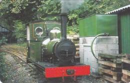 Isle Of Man, MAN 103, Steam Trains, Engine No.2, Sea Lion, 2 Scans.  Mint ? - Isla De Man