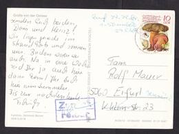 East Germany DDR GDR: Picture Postcard, 1980s, 1 Stamp, Mushroom, Fungus, Spider, Returned, Retour Cancel (minor Crease) - [6] Oost-Duitsland