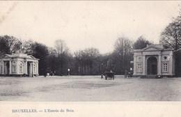 BRUXELLES - Entrée Du Bois - N'a Pas Circulé - Bossen, Parken, Tuinen