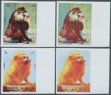 Schardscha / Sharjah: 1972, Monkeys, 20, 25, 75 Dh. And 1 R., 4 Values (Mi. # 1012/1015), Each Imper - Schardscha