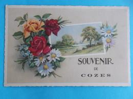 17 :COZES : SOUVENIR De., C.P.A.,carte En Bon état , - France