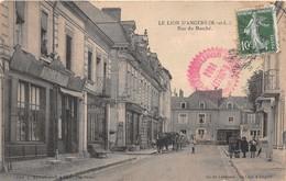 LE LION D' ANGERS -  Rue Du Marché , Animée - France