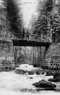 B56161 Moussey - Pont Du Bouton - Moussey