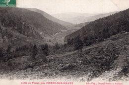 B56169 Vallée Du Fossat, Près Pierre Sur Haute - Zonder Classificatie