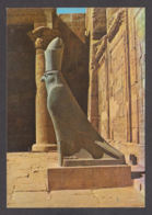 79411/ EDFOU, Statue Of God Horus - Idfu