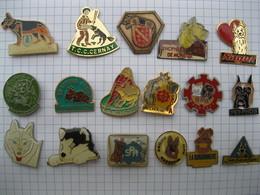 CHIEN SPA AGILITY  Lot De 17 Pin's - Pin's