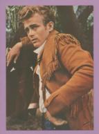 Star 27 James Dean - Celebrità