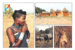 Afrique Lumiére Et Couleurs Du BENIN (1)  (- Editions: HPS 6 Photos Emile Hazoumè Et Lionel H.)*PRIX FIXE - Benin